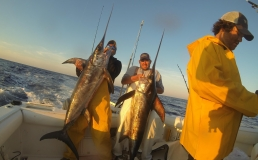 Pensacola Fishing Charters   Photos